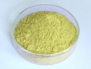 What Is The Role Of Scutellaria Baicalensis Extract In Cosmetics?